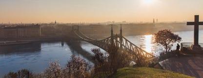 在日出的美丽的自由桥梁在布达佩斯,匈牙利,欧洲 库存图片