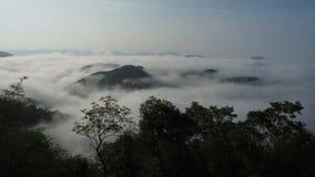 在日出的薄雾 免版税库存照片
