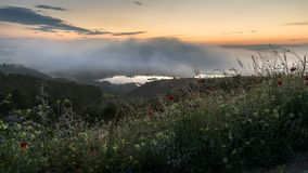 在日出的雾 免版税库存图片