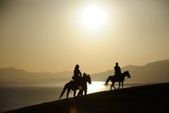 在日出的骑乘马 免版税库存照片