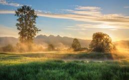 在日出的黄色薄雾与背景山 库存照片
