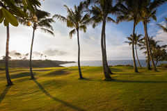 在日出的Beatufiul热带沿海高尔夫球漏洞 免版税图库摄影