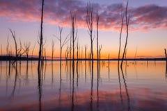 在日出的Manasquan水库 免版税图库摄影