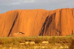 在日出的Uluru艾瑞斯岩石在关闭 库存照片