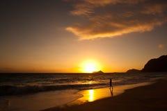 在日出的Waimanalo海滩 库存图片