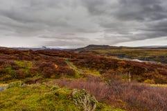 在日出金黄小时,有冰岛风景的空的街道 库存图片