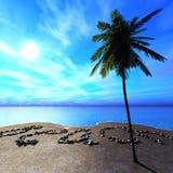 在日出,在海滩的日落,海洋日落,在海滩的题字期间的海岸 免版税库存图片
