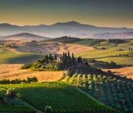 在日出, Val d'Orcia,意大利的风景托斯卡纳风景 免版税库存图片