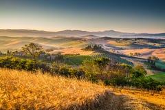 在日出, Val d& x27的风景托斯卡纳风景; Orcia,意大利 免版税图库摄影