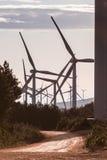 在日出6的风轮机 库存照片
