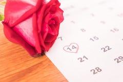 在日历上升了与2月14日华伦泰的da的日期 库存图片
