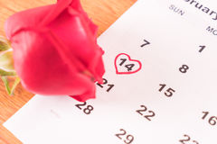 在日历上升了与2月14日华伦泰的da的日期 免版税库存图片