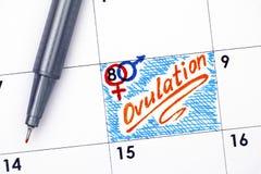 在日历的提示排卵与橙色笔 免版税库存图片