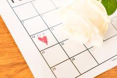 在日历的白色玫瑰与2月14日Valentin日期  免版税图库摄影