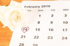 在日历的白色玫瑰与2月14日Valentin日期  免版税库存照片