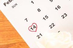 在日历的白色玫瑰与2月14日Valentin日期  库存照片