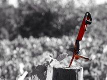 在日志的红色剪刀 库存照片