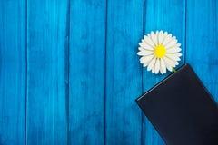 在日志的选项以花的形式 库存照片