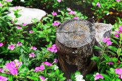 在日志背景的地球日词,帮助保护我们的树想法 免版税库存照片