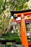 在日本人寺庙的Fox 图库摄影