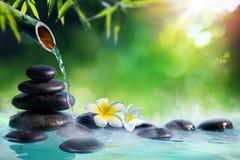 在日本喷泉的羽毛花有按摩石头和竹子的 免版税库存图片