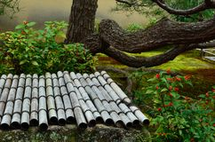 在日本庭院,京都日本的竹子好的盒盖 免版税库存照片
