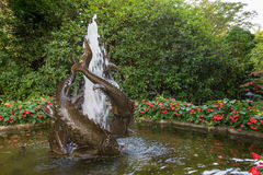 在日本庭院, Butchard庭院,维多利亚,加拿大里钓鱼喷泉 免版税库存照片