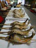 在日本式的烤鱼 图库摄影