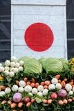 在日本旗子下的图片的菜 库存图片
