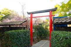在日本植物园入口的红色日本门  免版税库存图片