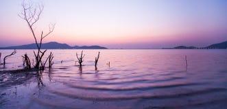 在日落、美丽的轻轻地波浪和不生叶的树干的平安的湖边 被弄脏的山、照明设备和暮色天空 免版税库存图片