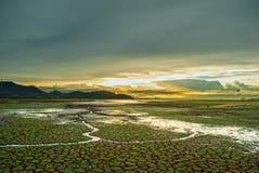 在日落、破裂的地面与小绿草和导致河的一点水流量期间的美丽的天空 库存图片