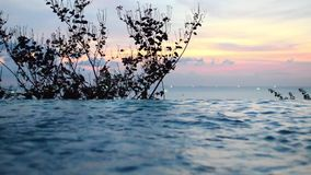 水在日落下的游泳池 股票录像