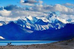 在日落以后的Tso Moriri湖 库存图片