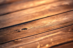 在日落光的老木纹理 库存照片