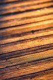 在日落光的老木纹理 免版税库存图片
