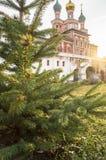 在日落光的年轻云杉在背景中在-在Novodevichy女修道院,莫斯科给调解的教会装门 免版税图库摄影