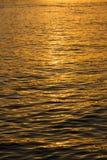 在日落光的水平面 库存图片