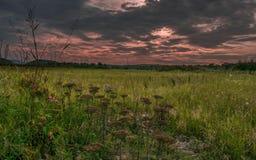 在日落前的一个黑暗的晚上领域风景 免版税库存图片