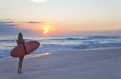 在日落日出海滩的妇女冲浪者&冲浪板 免版税库存图片