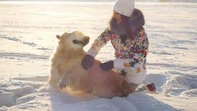 在日落时间,年轻美丽的愉快的女孩使用与在雪的一条猎犬狗在冬天在晴天 免版税图库摄影