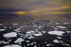 在日落期间的浮动冰 免版税库存照片