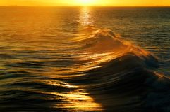在日落期间的美丽的海浪,金黄波浪 免版税图库摄影