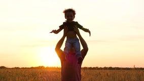 在日落期间,在慢动作,一个愉快的父亲投掷他的麦田的儿子 股票视频