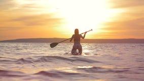 在日落期间,妇女在paddleboard游泳 自由活跃人概念 影视素材