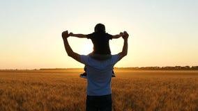 在日落期间,爸爸举行他的他的肩膀的在麦田的儿子和步行 股票录像