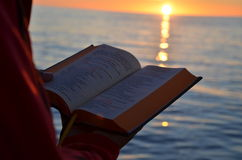 读在日落期间在波罗的海 免版税库存照片
