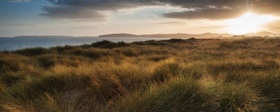 在日落期间的全景风景美好的海滩场面 库存图片