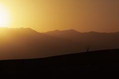 在日落期间的孤立蜡烛木 免版税图库摄影