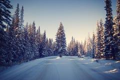 在日落期间的美丽的多雪的森林公路,班夫国家公园,加拿大 库存照片